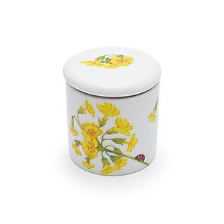 骨ツボ菜の花.jpg
