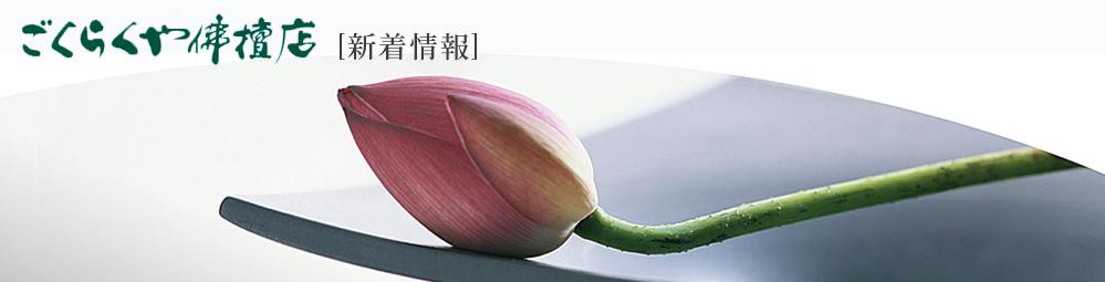 shintyaku.jpg